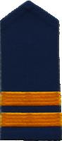 Lieutenant Commissioner