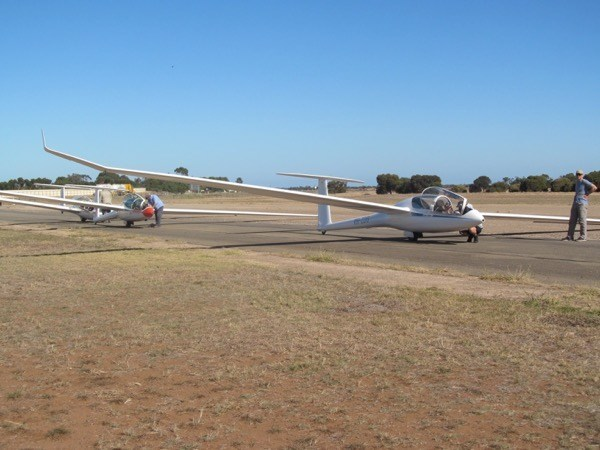 Three Adelaide Soaring Club gliders ready for the day's flying at Gawler